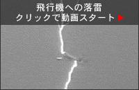 btn_plane3.jpg